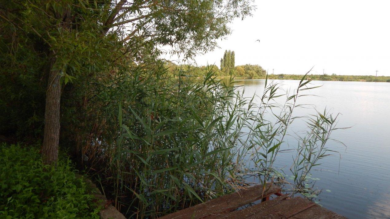 Teren superb, deschidere la lac